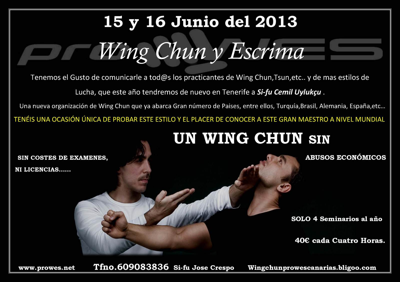 wing chun prowes